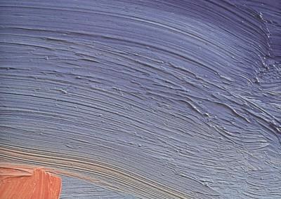 Nuvola fulva – Catalogo